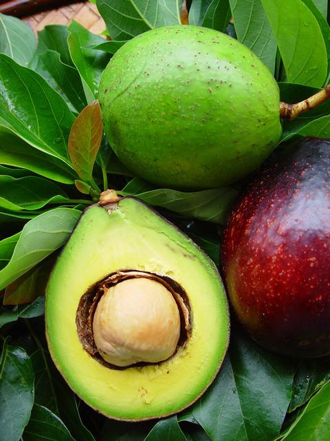 caribfruits avocat fruits tropicaux. Black Bedroom Furniture Sets. Home Design Ideas