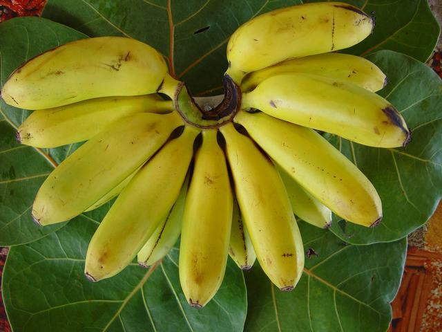 caribfruits banane fruits tropicaux. Black Bedroom Furniture Sets. Home Design Ideas