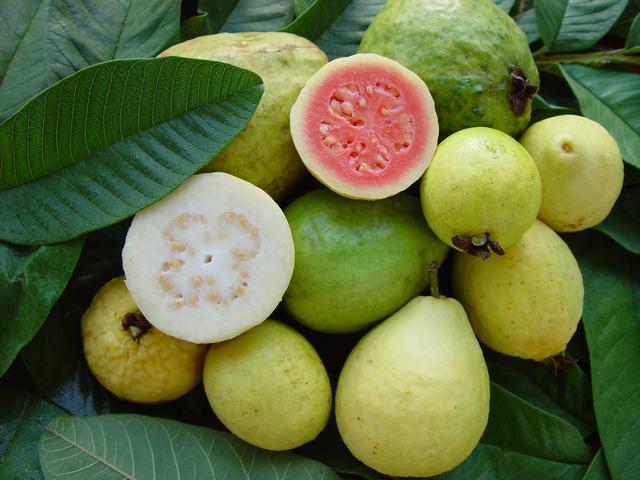 caribfruits goyave fruits tropicaux. Black Bedroom Furniture Sets. Home Design Ideas